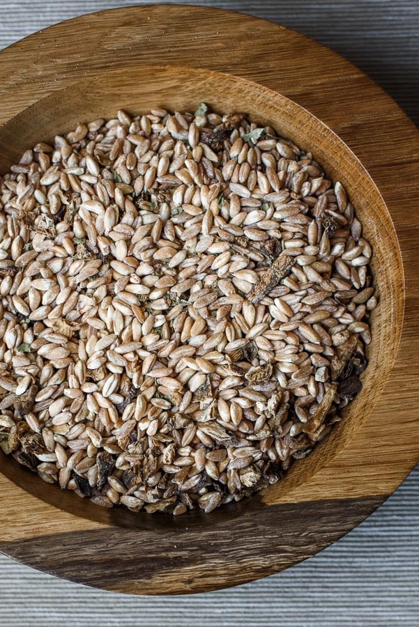 Pearled farro with dried mushrooms.